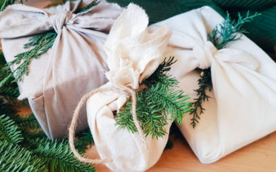 8 Surprising Eco Gifts for Christmas!